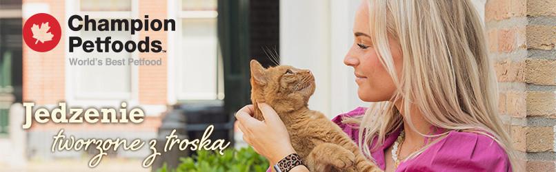 Sucha karma dla kota - Jedzenie dla kotów